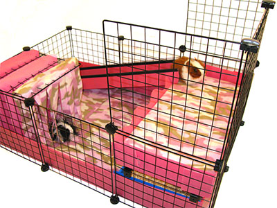 Pink Cage with Fleece Flippers