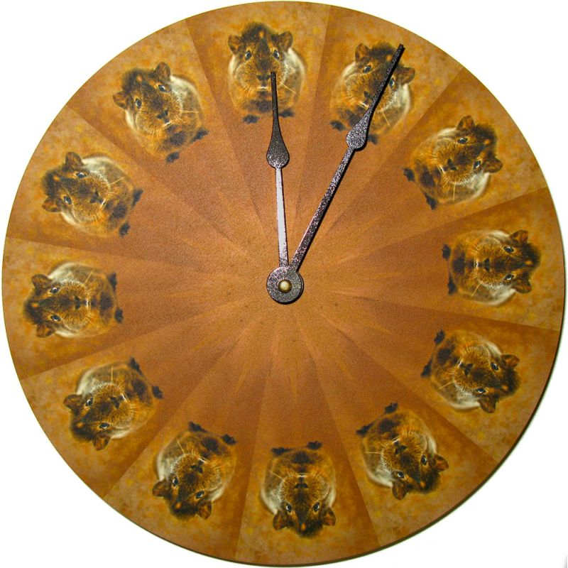 Golden Agouti Guinea Pig Wall Clock 10 Quot Diameter