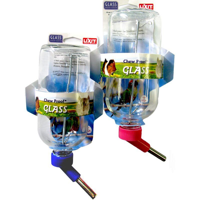Lixit Water Bottle - 16oz - Glass