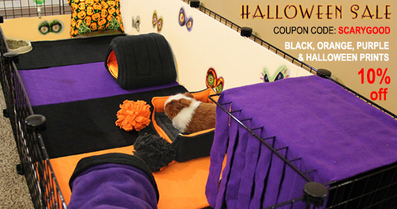 Halloween Fleece and Accessories for Guinea Pig Cages on the Guinea Pig Market