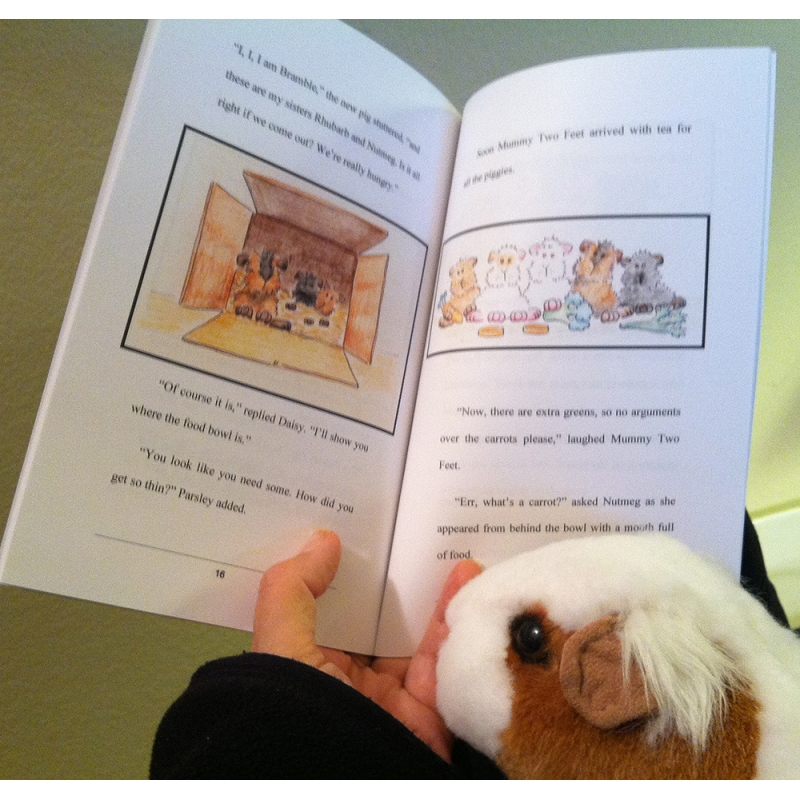 The Adventures of Parsley Pig and Friends, reading