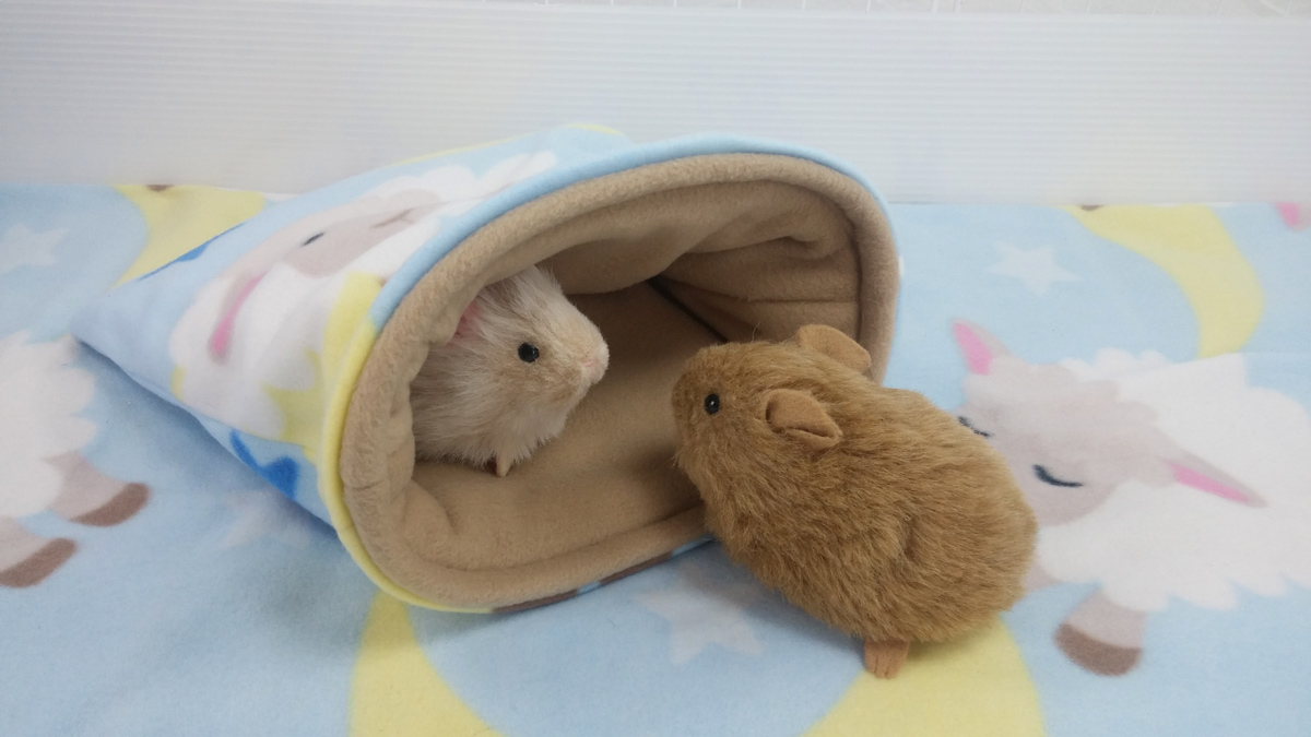 Sheepy Time Cavy Cave for Guinea Pigs