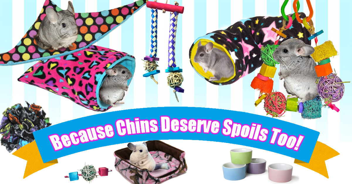 Cage Bedding, Toys and Accessories for Chinchillas