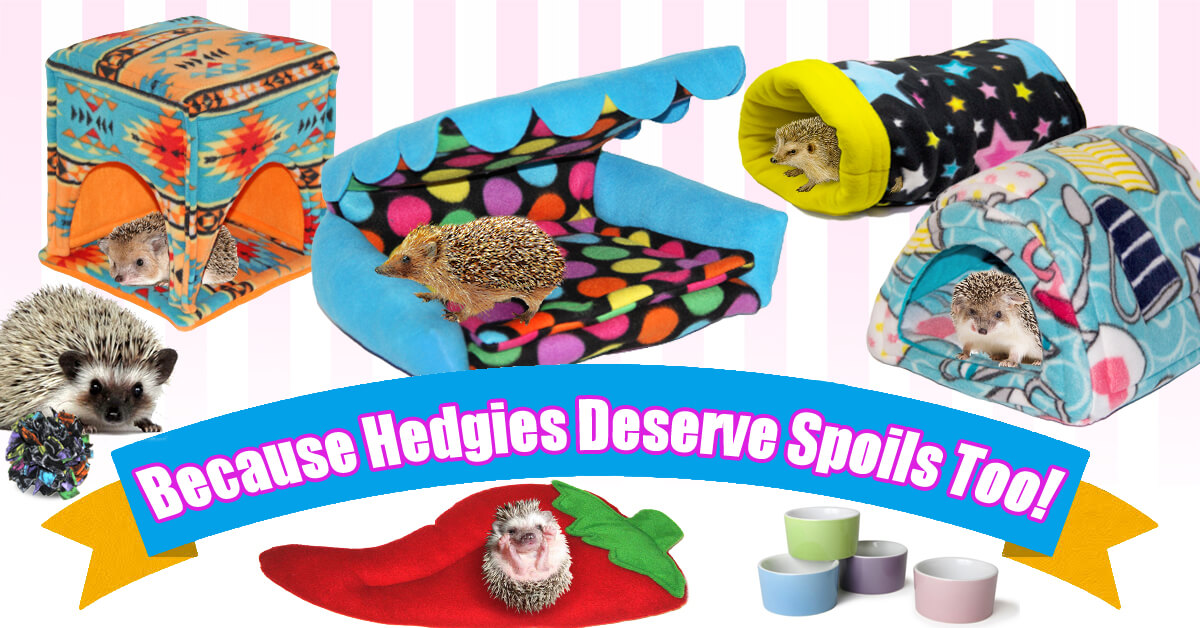 Cage Bedding and Accessories for Hedgehogs