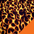 Flames Fleece Fabric