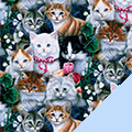 Kittens Fleece Fabric