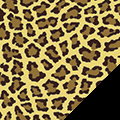 Leopard Spots Fleece Fabric