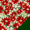 Poinsettia Fleece Fabric