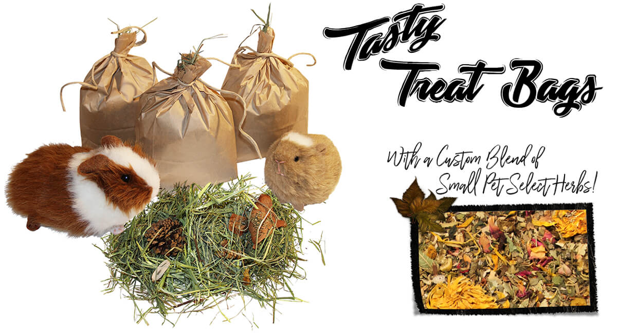 Tasty Treat Bags for Guinea Pigs