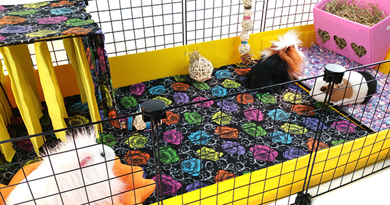 Cagetopia® C&C Cage with Fleece
