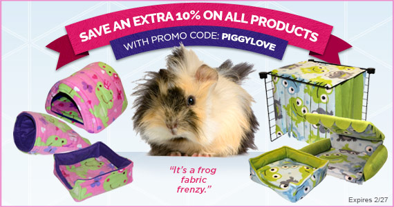 Save 10% Until 2/27 with Promo Code: PiggyLove