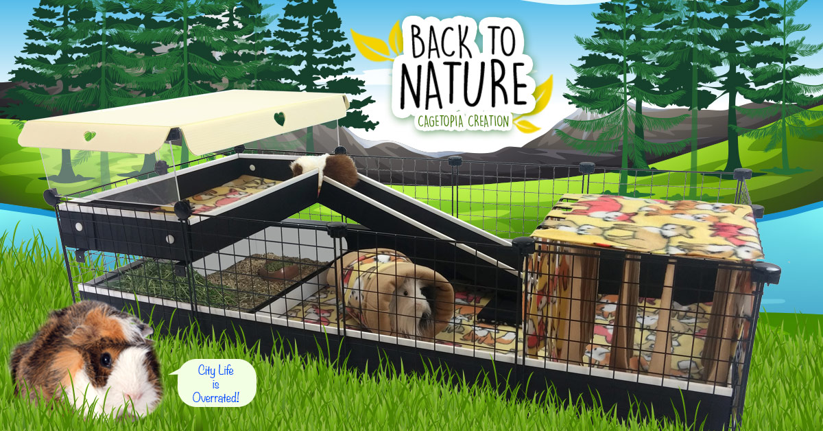 Back to Nature Cagetopia Creation
