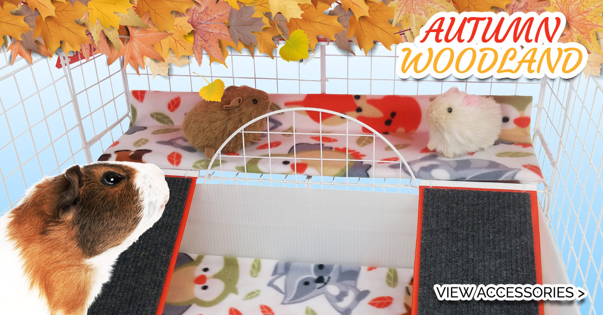 Autumn Woodland Cagetopia Creation