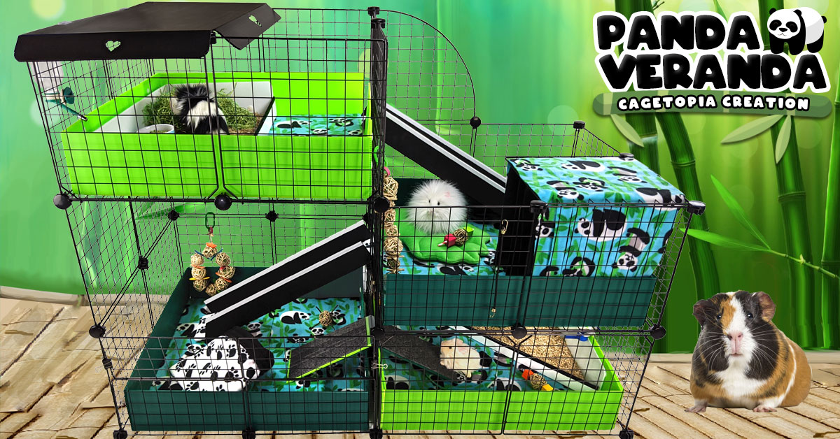 Panda Veranda Cagetopia Creation