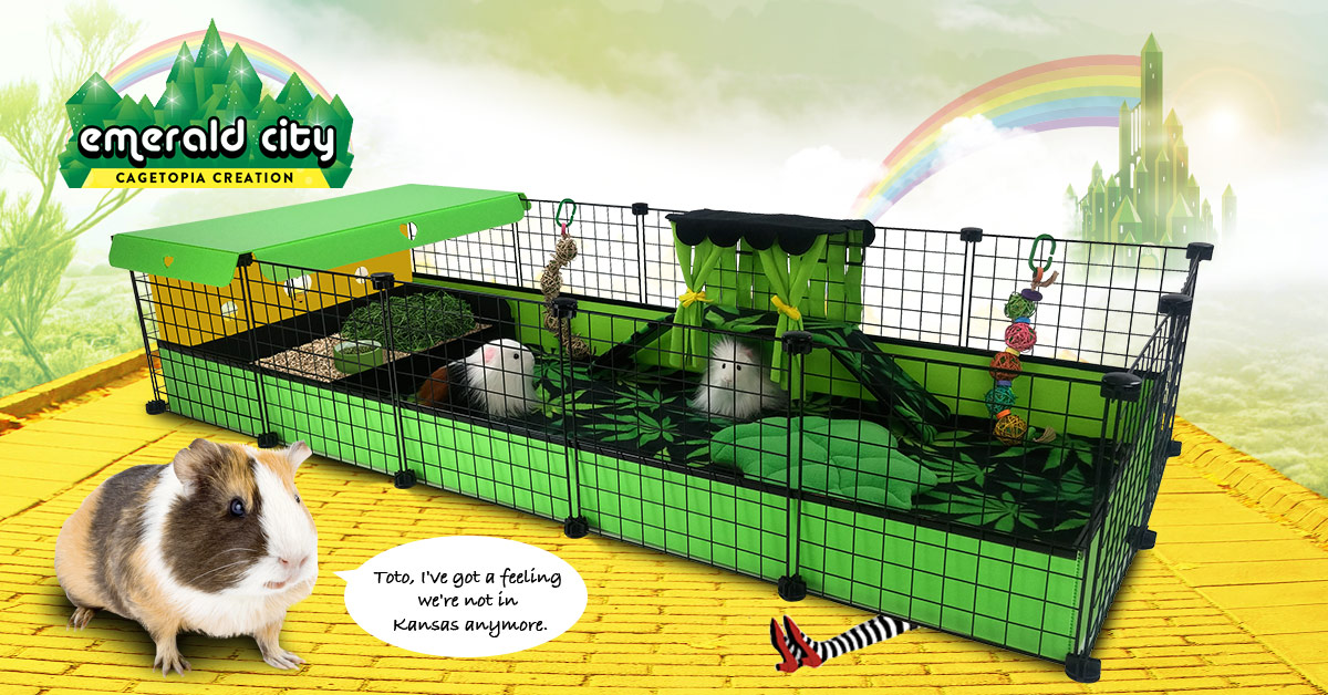 Emerald City Cagetopia creation