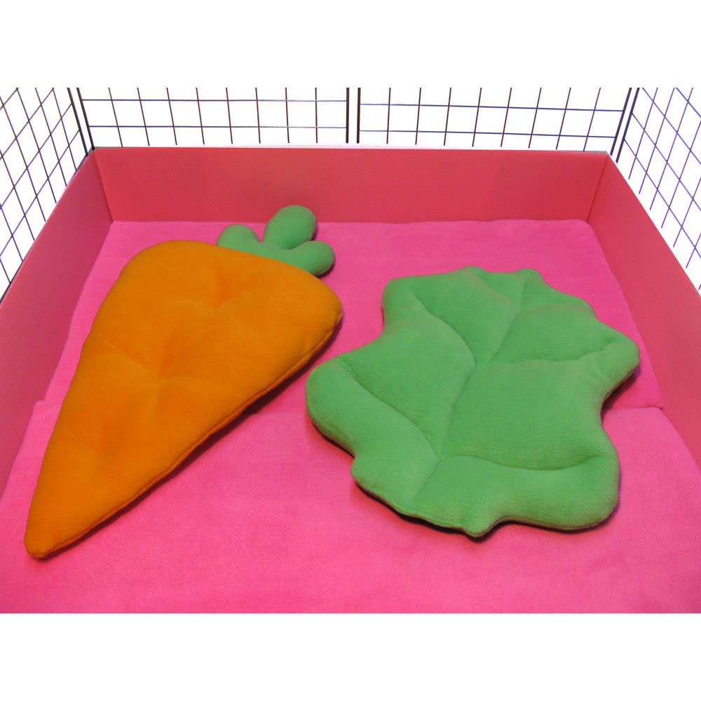 Carrot and Lettuce Lounger