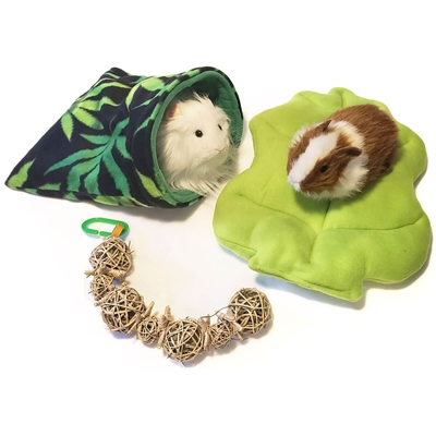 Cannabis Bed and Treat Bundle for Guinea Pigs