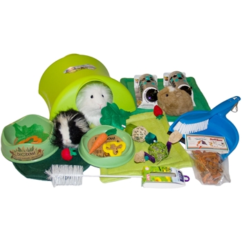 Starter Kit Deluxe for Guinea Pigs in Green