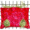 Watermelon Seeds Hay Bag for Guinea Pigs