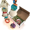 Herbalicious Delights Toy Bundle