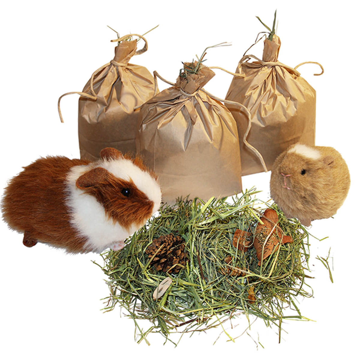 Tasty Treat Bags with Fresh Hay, Herbs and Treats
