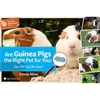 Are Guinea Pigs the Right Pet for You?
