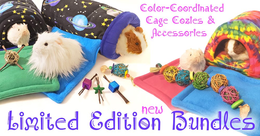 New Cozy and Accessories bundles at the Guinea Pig Market