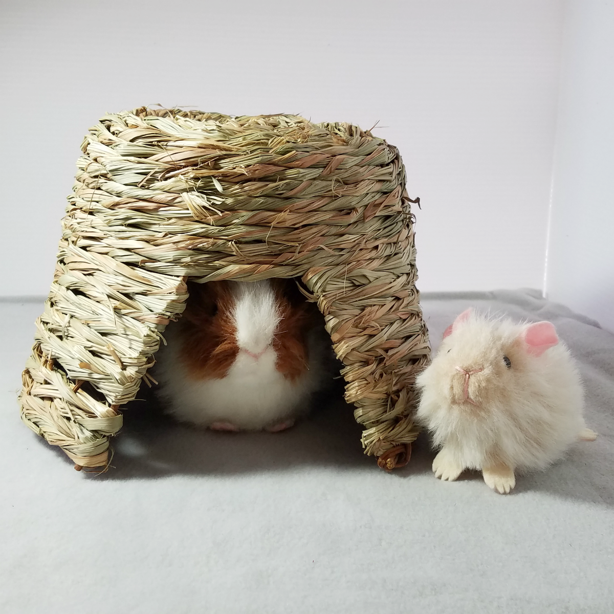 Nature Hut Hidey