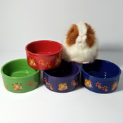 Ceramic Guinea Pig dish with paw prints